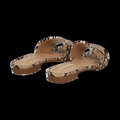 Mules flat beige in eco-pelle, effetto snake skin, Primadonna, 132708189PTBEIG037, 004 preview