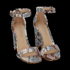 Sandali celesti stampa pitone, tacco 10,5 cm, Primadonna, 152709444PTCELE039, 002 preview