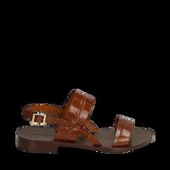 Sandales en cuir imprimé crocodile, Primadonna, 15D620010CDCUOI036, 001a
