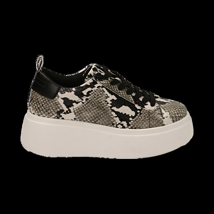 Sneakers blanc/noires imprimé python, compensée 6,50 cm , Primadonna, 167505101PTBINE035