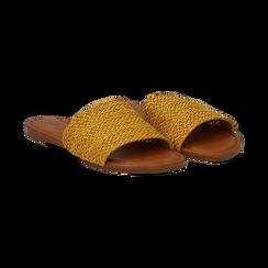 Mules flat gialle in eco-pelle intrecciata, Primadonna, 133600110EIGIAL036, 002 preview