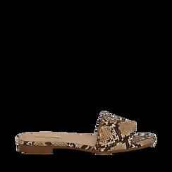 Mules flat beige in eco-pelle, effetto snake skin, Primadonna, 132708189PTBEIG035, 001a