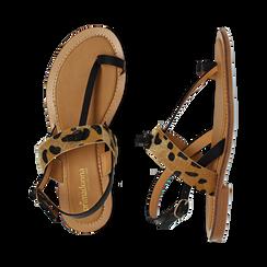 Sandali infradito neri in eco-pelle con dettaglio leopard, Primadonna, 135201202EPNERO036, 003 preview