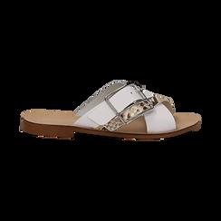 Mules bianche in vera pelle con dettagli snake skin, Primadonna, 133500088PEBIAN036, 001 preview