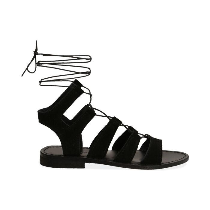 Sandales en daim noir, Primadonna, 178100348CMNERO035