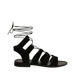 Sandales en daim noir, Primadonna, 178100348CMNERO035, 001a