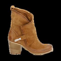Biker boots cuoio in camoscio, tacco 7 cm, Primadonna, 155605607CMCUOI036, 001a
