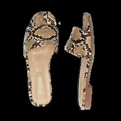 Mules flat beige in eco-pelle, effetto snake skin, Primadonna, 132708189PTBEIG037, 003 preview