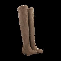 Stivali sopra il ginocchio taupe scamosciati, Primadonna, 122120631MFTAUP, 002 preview