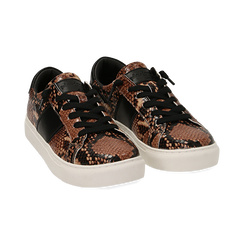 Sneakers marron imprimé python, Primadonna, 162619071PTMARR036, 002 preview