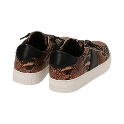 Sneakers marron imprimé python, Primadonna, 162619071PTMARR036, 004 preview