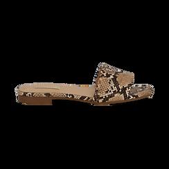 Mules flat beige in eco-pelle, effetto snake skin, Primadonna, 132708189PTBEIG037, 001 preview