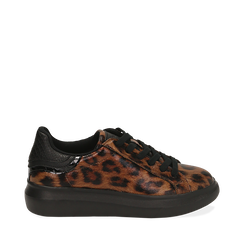 Sneakers leopard , Primadonna, 162602011EPLEMA035, 001a