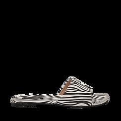 Mules flat zebrate in microfibra, Primadonna, 134989113MFZEBR035, 001a