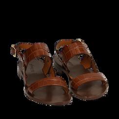 Sandales en cuir imprimé crocodile, Primadonna, 15D620010CDCUOI036, 002a