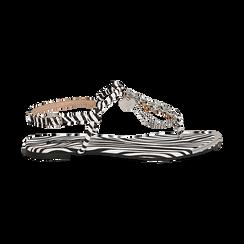Sandali infradito flat zebra print in microfibra, con catenelle, Primadonna, 134909285MFZEBR036, 001 preview