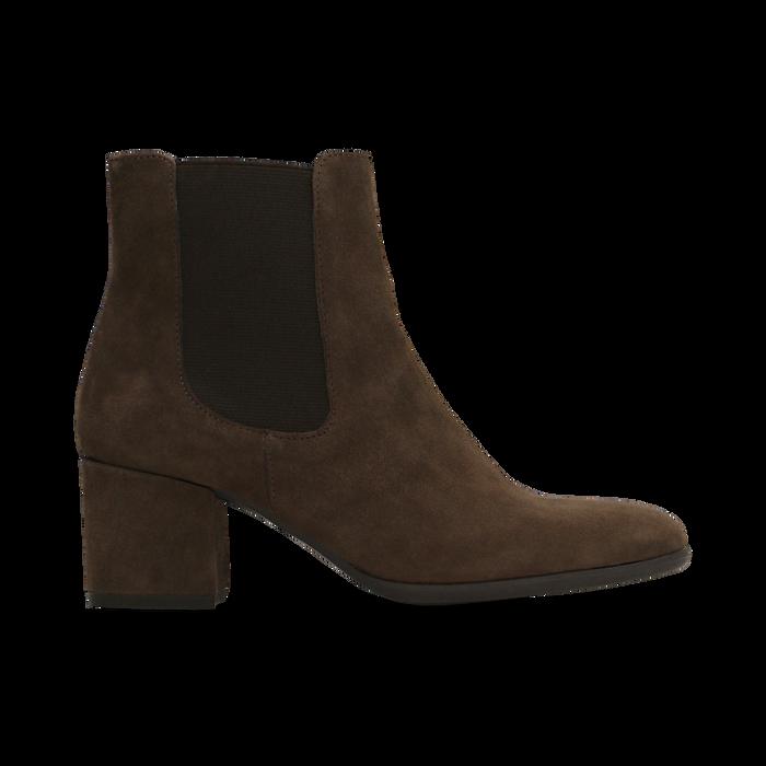 Chelsea Boots marroni in vero camoscio, tacco quadrato medio 5,5 cm, Primadonna, 127722102CMMARR