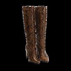 Stivali marroni in eco-pelle stampa pitone, tacco 9,5 cm , Primadonna, 142166710PTMARR036, 002a