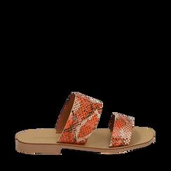 Mules flat arancio in vernice effetto snake skin, Primadonna, 136767003PTARAN035, 001a