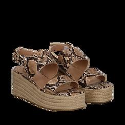 Sandali platform beige in eco-pelle, effetto snake skin, zeppa in corda 7 cm , Primadonna, 132708157PTBEIG035, 002a